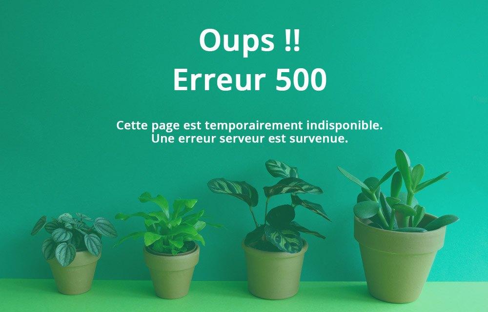 Visuel d'une page en erreur 500